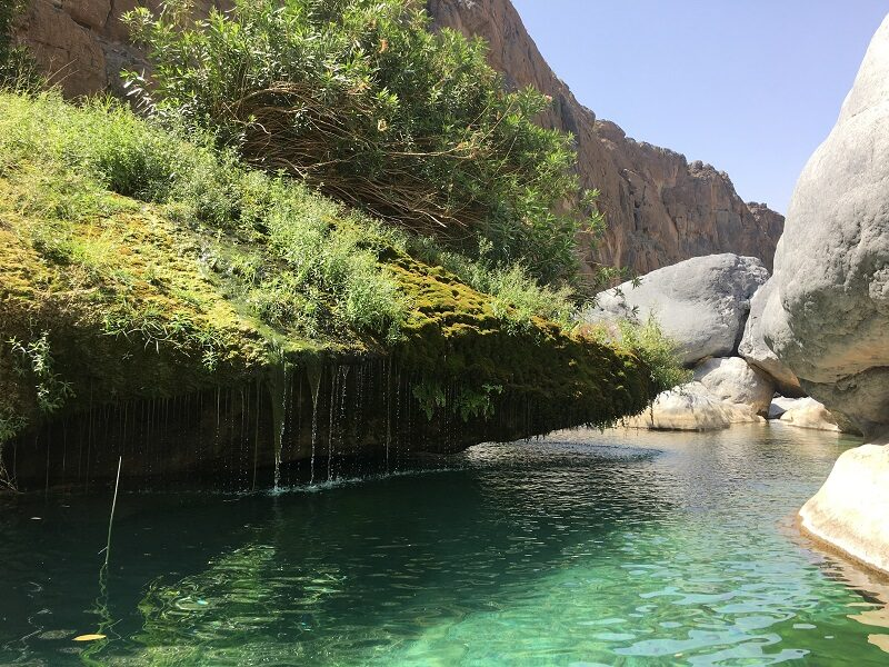 Beautiful green waters at Wadi Damm